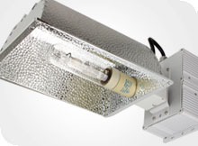 PhotonMax 315W Ceramic Metal Halide Fixture